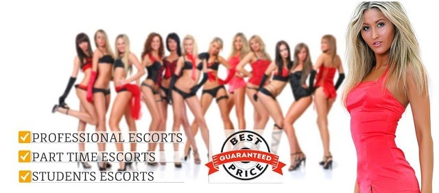 escorts and sex guide vienna